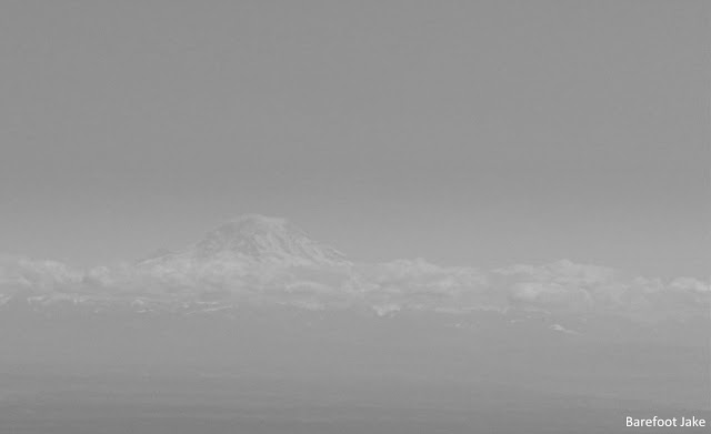 Mount rainier from olympic