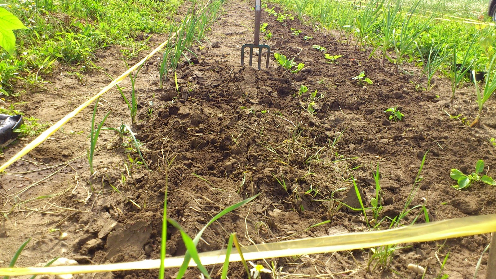 Scharfes garteln for Boden umgraben
