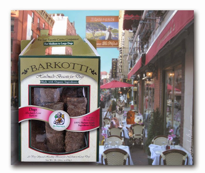 THe REturns in Little Italy with Dr. Harvey's Barkotti box inset