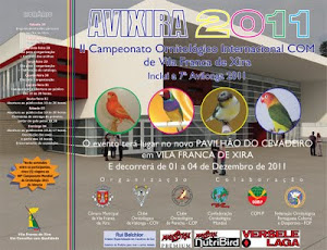 INTERNACIONAL AVIXIRA 2011