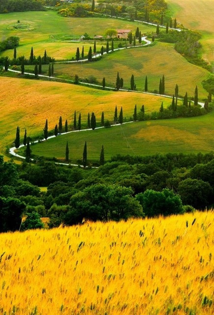 Zig Zag Road in Tuscany, Italy photo