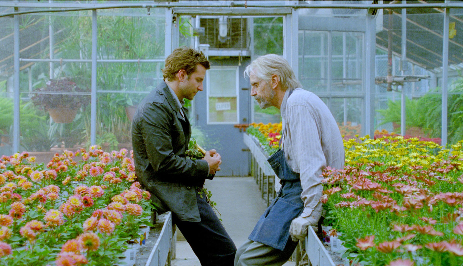 http://1.bp.blogspot.com/-iM4L9HrZsmU/UKo69j4EtiI/AAAAAAAAAK8/irYtGoXO_cI/s1600/The-Words-Bradley-Cooper-and-Jeremy-Irons.jpg
