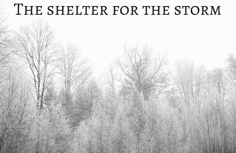 { The shelter for the storm }