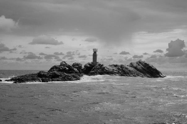 Timeshare rentals blog timeshare travel for Deep sea fishing puerto vallarta