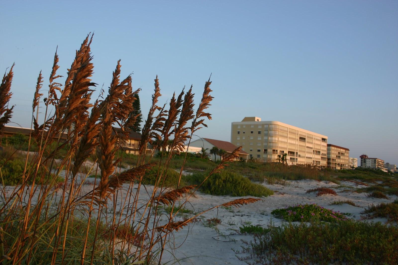 Today In Cocoa Beach Sea Oats And Condos