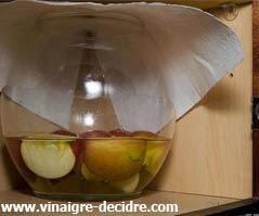 http://1.bp.blogspot.com/-iN3Axc8l1xg/UzyREdFL5zI/AAAAAAAAAoM/VmfWioL-Kno/s1600/faire+du+vinaigre+de+cidre..jpg