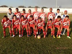 Sobradinhense, Campeão Brasiliense infantil de 2012!