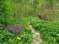 riportok a blog írójával a gyűjtésről, a szemléletről, a természetről, természetvédelemről: