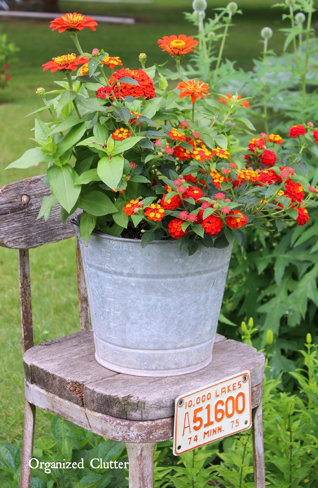 Beautiful flowers in junky containers organized clutter for Small garden decoration