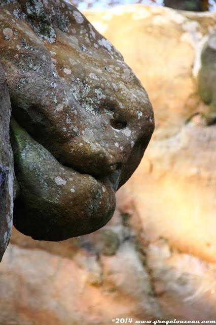 Drôle de bête, Rocher du Calvaire, Fontainebleau, (C) 2014 Greg Clouzeau
