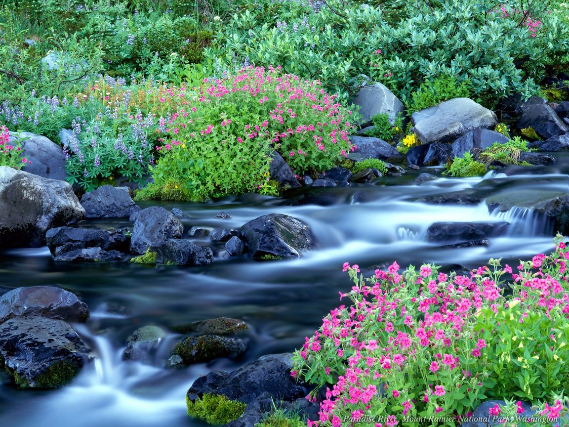 http://1.bp.blogspot.com/-iONpzJIr-SA/UE5w_j0THMI/AAAAAAAABx8/ETFAX7oNfXE/s1600/nature-wallpaper-253.jpg