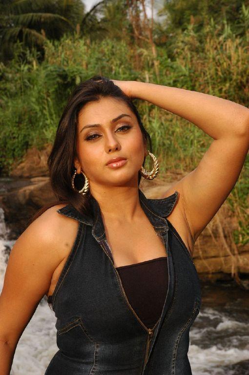 Namitha Maya Hot HD wallpapers collection   HD Wallpapers