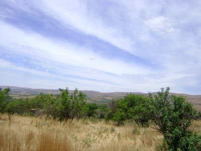 Piękne krajobrazy w Magaliesberg widziane na naszej wycieczce