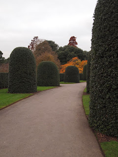 London based Garden Designer review of Kew Gardens. Topiary in landscape design