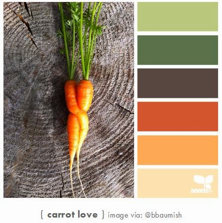 http://design-seeds.com/home/entry/carrot-love