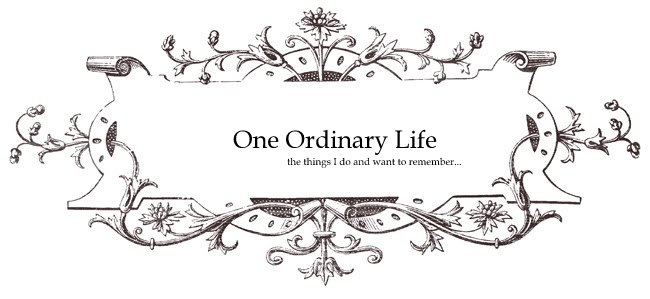 One Ordinary Life