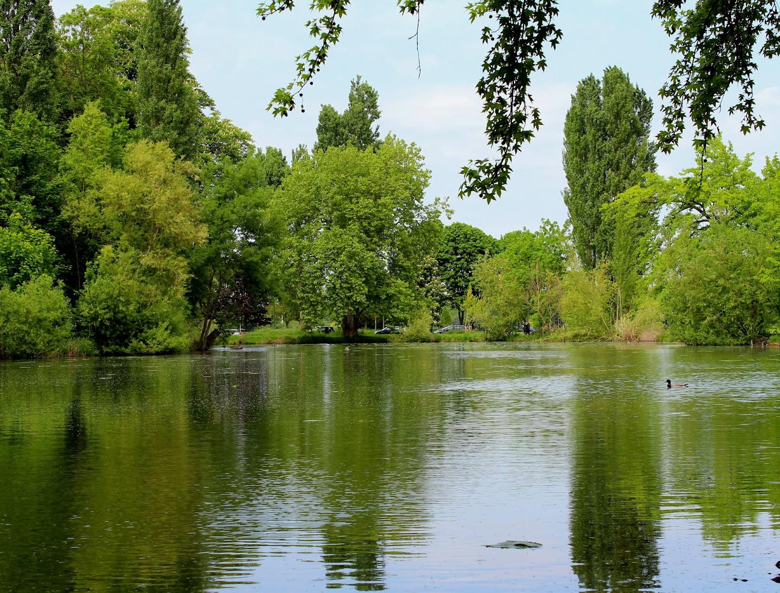 La Clairiere Bois De Boulogne - Sojourn in Paris The Bois de Boulogne Disaster