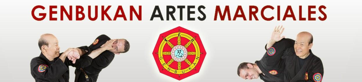 ARTES MARCIALES BARCELONA: NINPO - JUJUTSU NINJUTSU