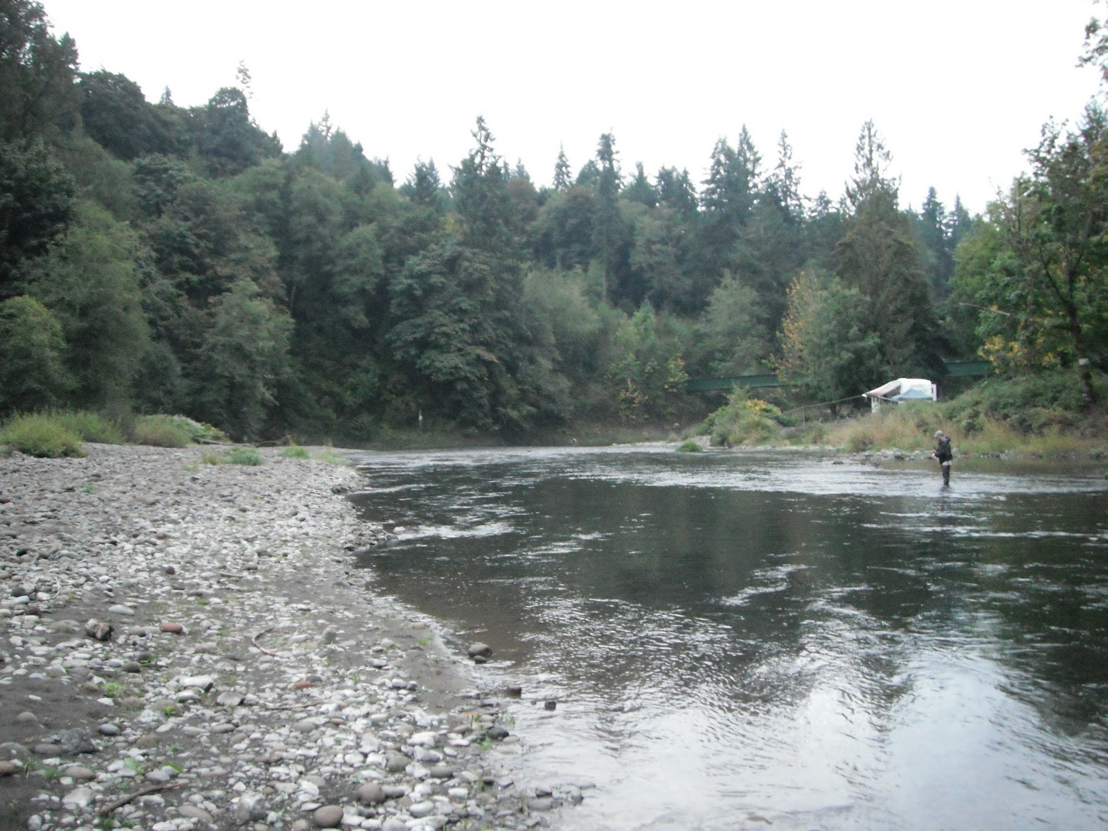 where i have fished kalama river wa