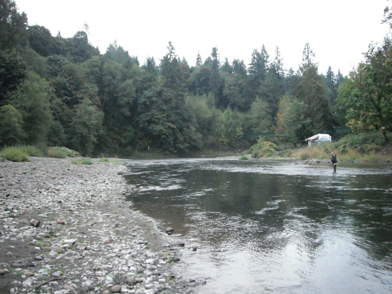 Where i have fished kalama river wa for Kalama river fishing