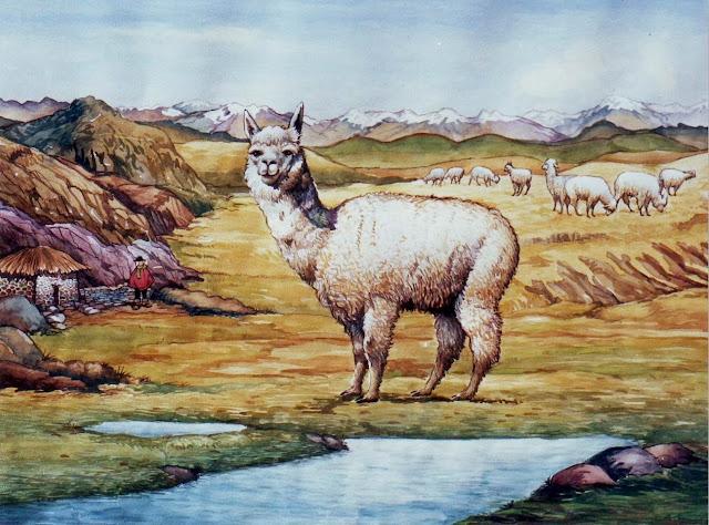 paisajes-peruanos