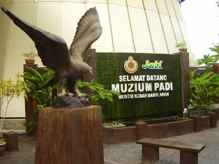 Panoramio - Photo of Muzium Padi Kedah