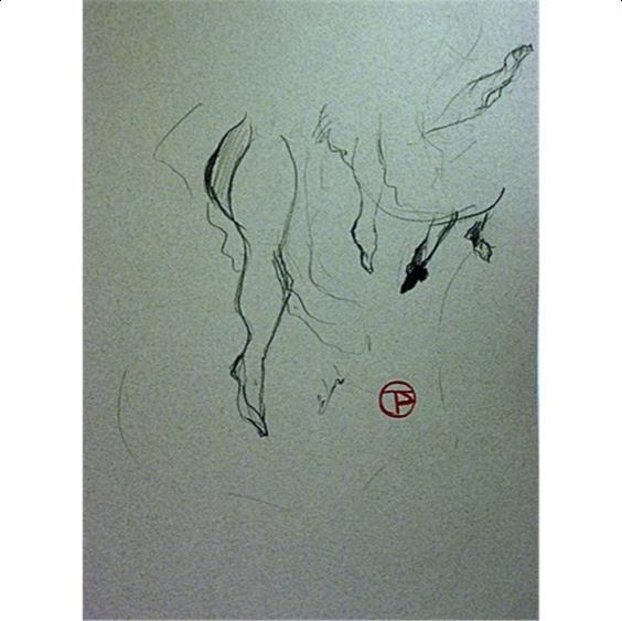 Implied Line Art Quizlet : Shanshan s line implied shape and