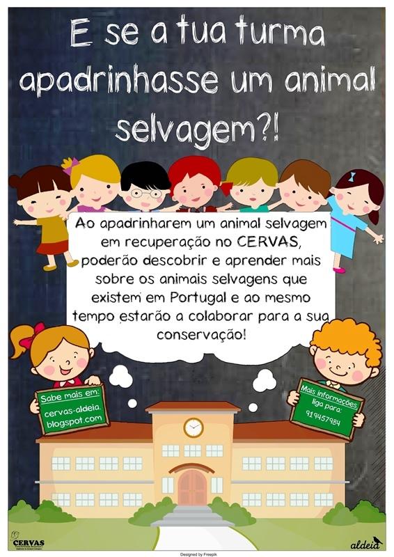 Apadrinhamentos para escolas!