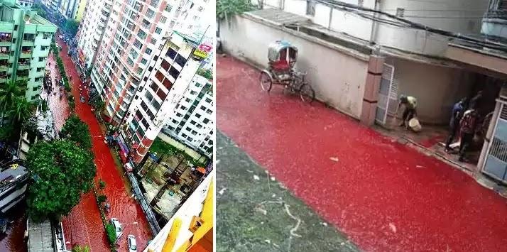 Σκηνές Αποκάλυψης: Ποτάμια αίματος σε δρόμους του Μπαγκλαντές, έπειτα από θυσίες ζώων [Βίντεο]