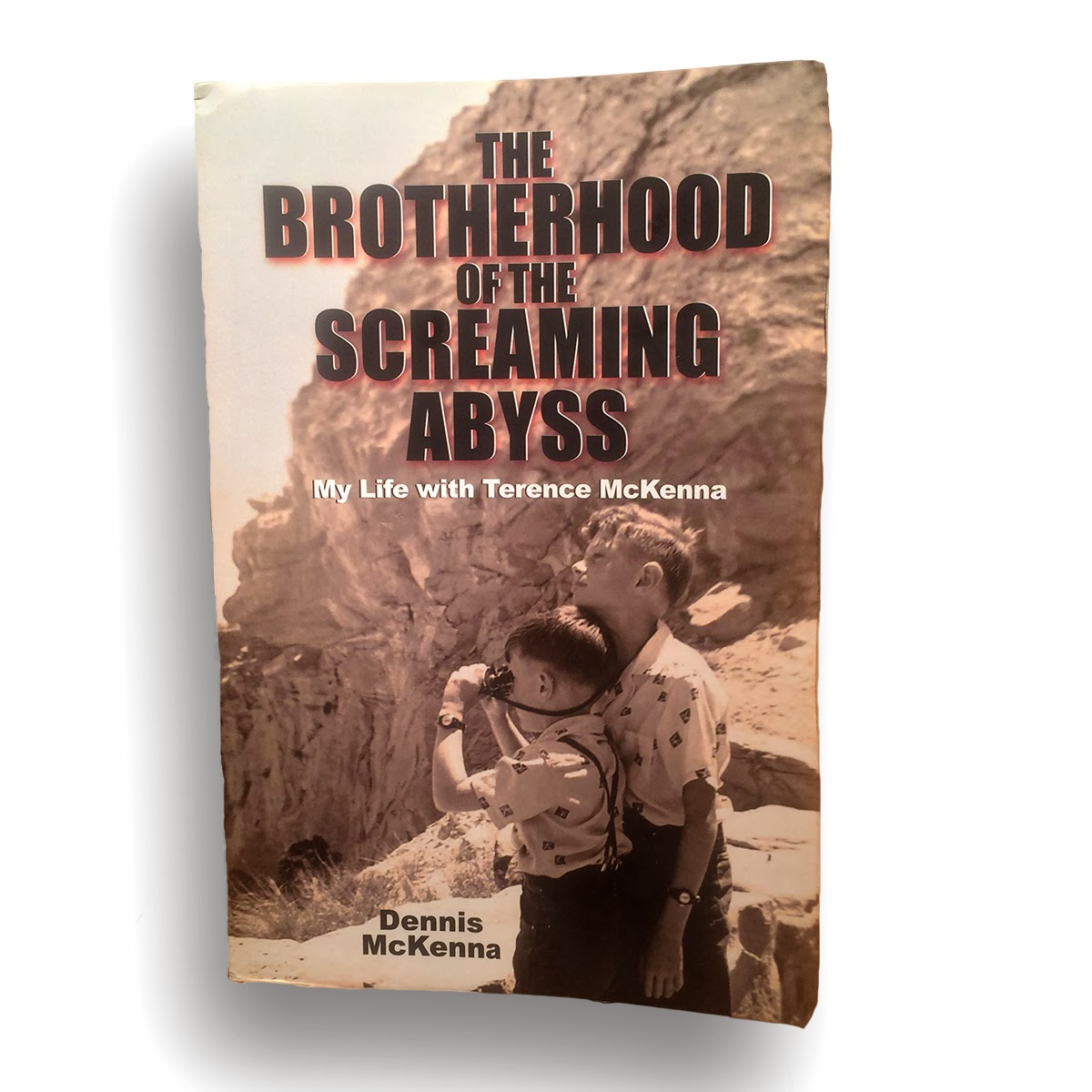 cover of Denis McKenna's Brotherhood of the Screaming Abyss