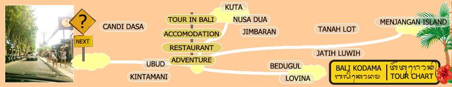 Bali Kodama | Tour Chart