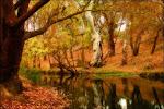 La høsten komme!