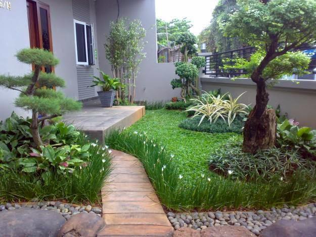 Teras dan taman rumah minimalis 3