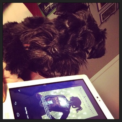 A black Schnauzer, Duffy, faces the camera at a Dutch tilt. He has one paw on a white hand holding a white Kobo with New Amsterdam's cover on its screen. The green-tinted cover features a woodcut of a woman floating the ghostly image of a skull in one hand while candles float in the background.