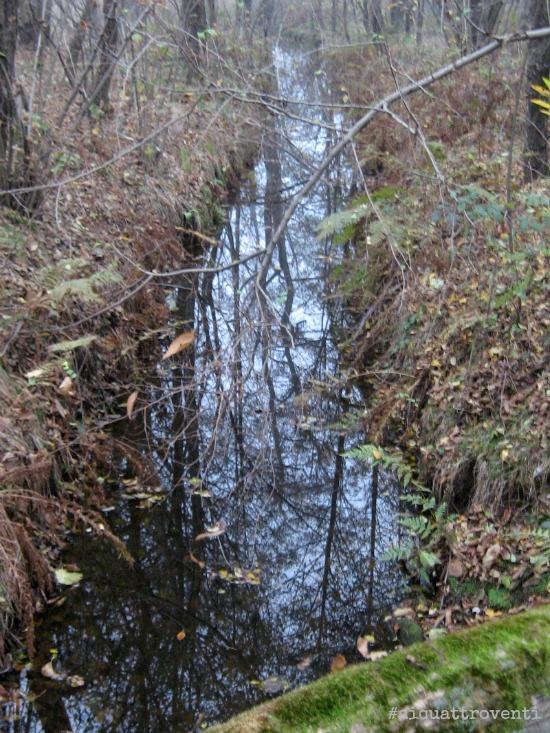 aiquattroventi-autunno-lagoni-riflessi-rivo