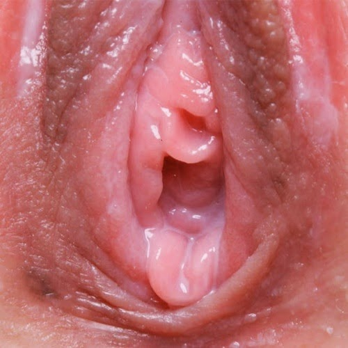 See the close up of this pink pussy - Photo