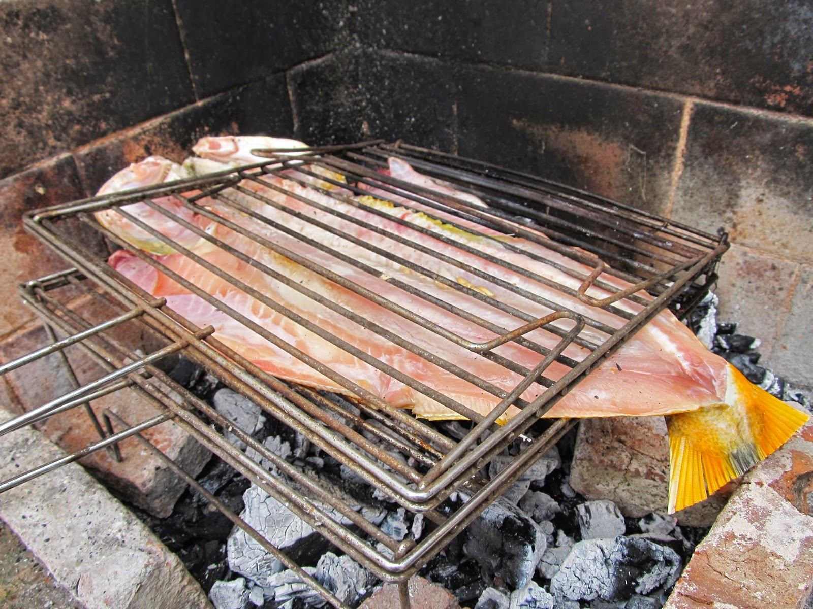 Velero zupay el mejor manjar de nuestro rio dorado a la - Parrillas para pescado ...
