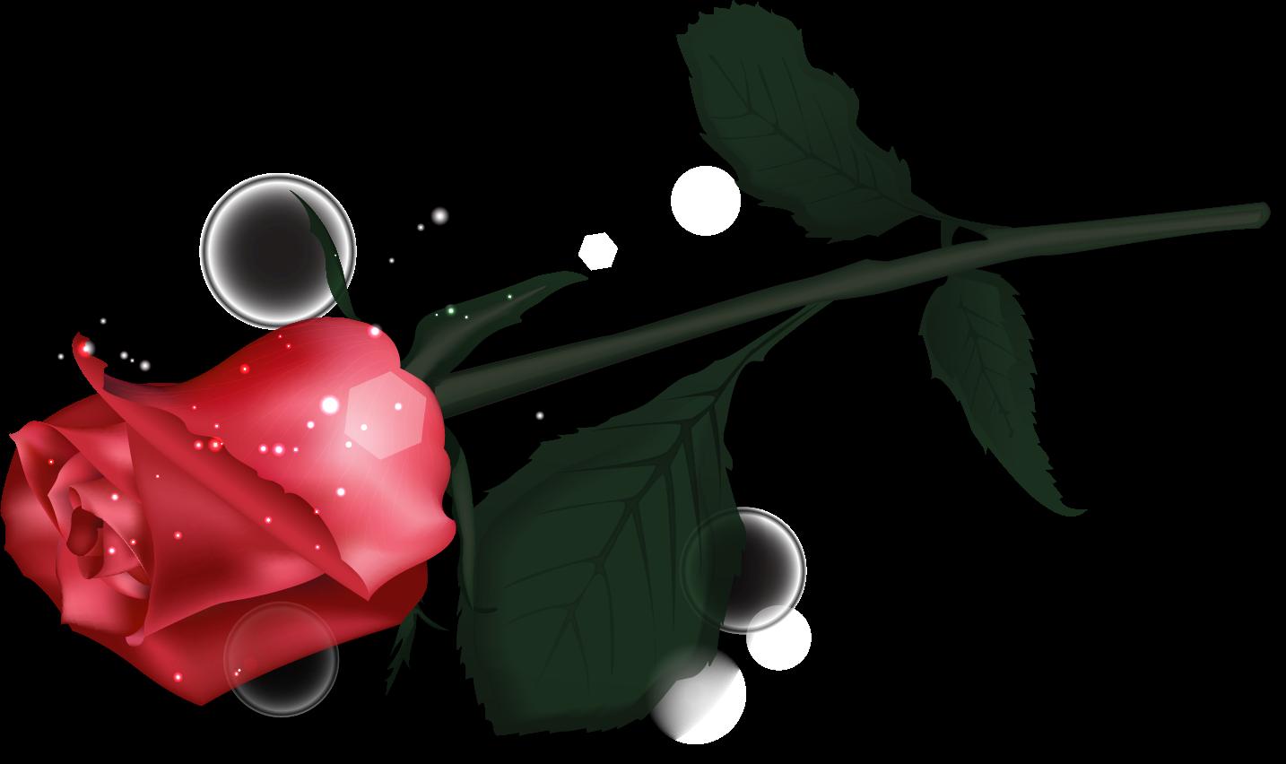 Картинки по запросу картинки-клипарт-роза и перо