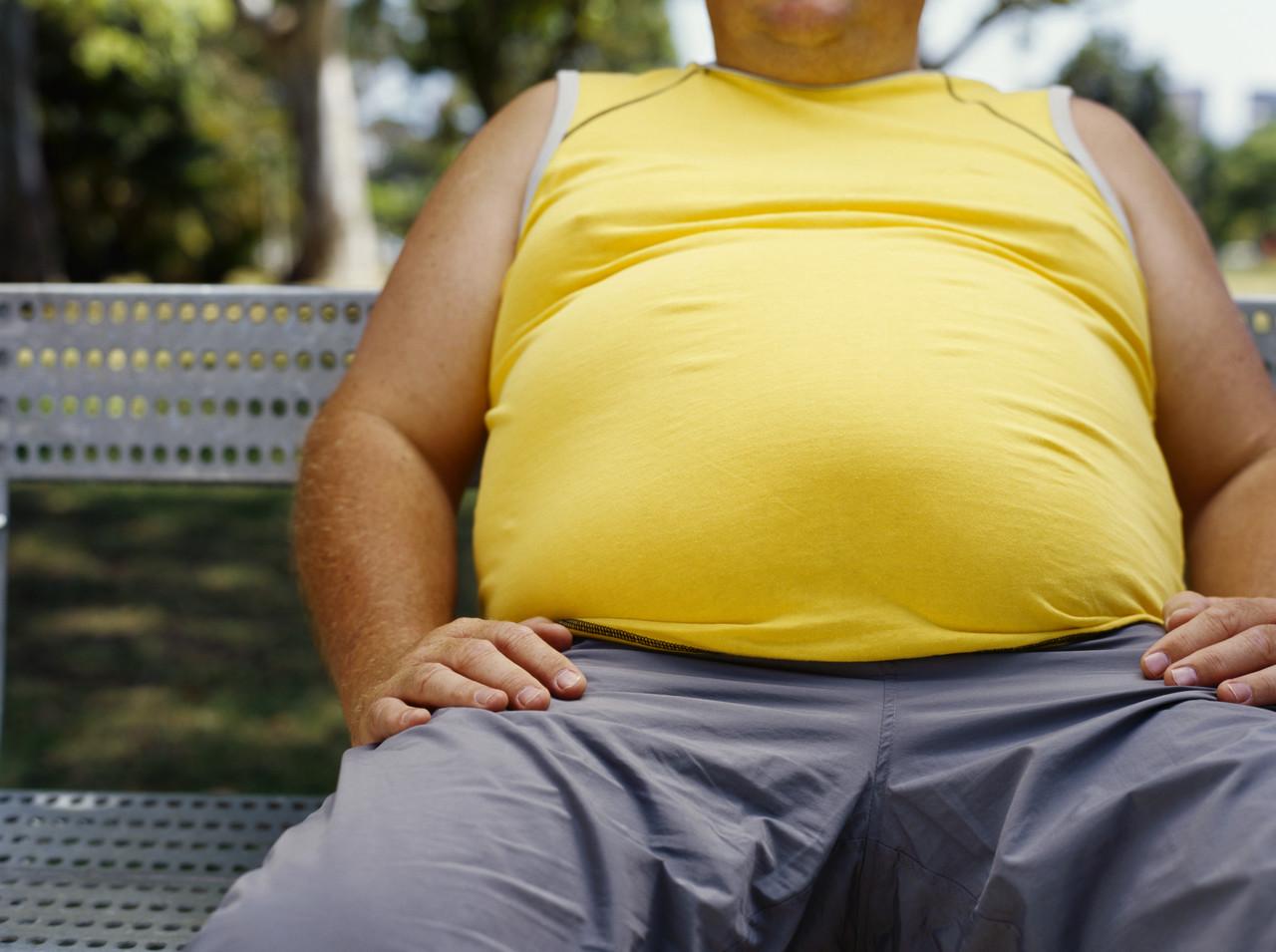 obese - Lazy Sunday - Anonymous Diary Blog