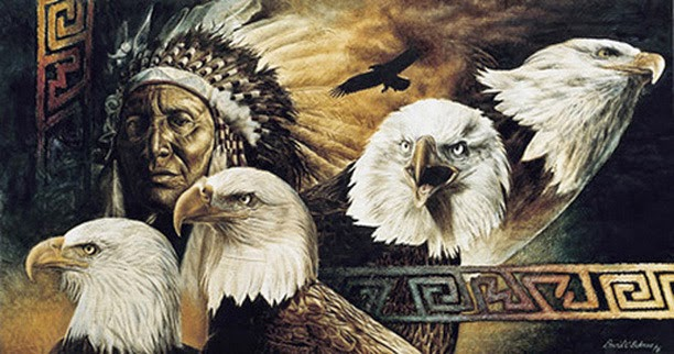 White Wolf Eagle Feathers And The Sacred Meaning To Lakota People