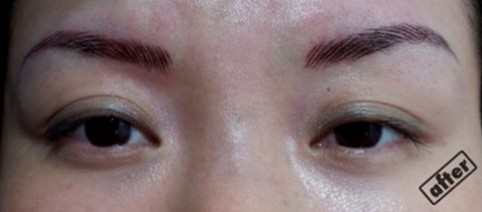 eyebrow after eyebrow embroidery