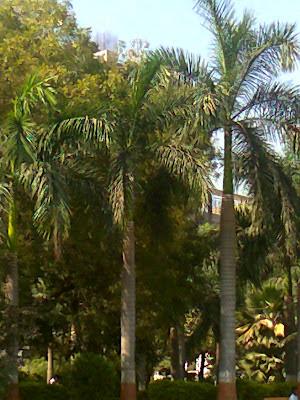 prahladnagar garden ahmedabad