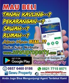 Sewu Property Lampung