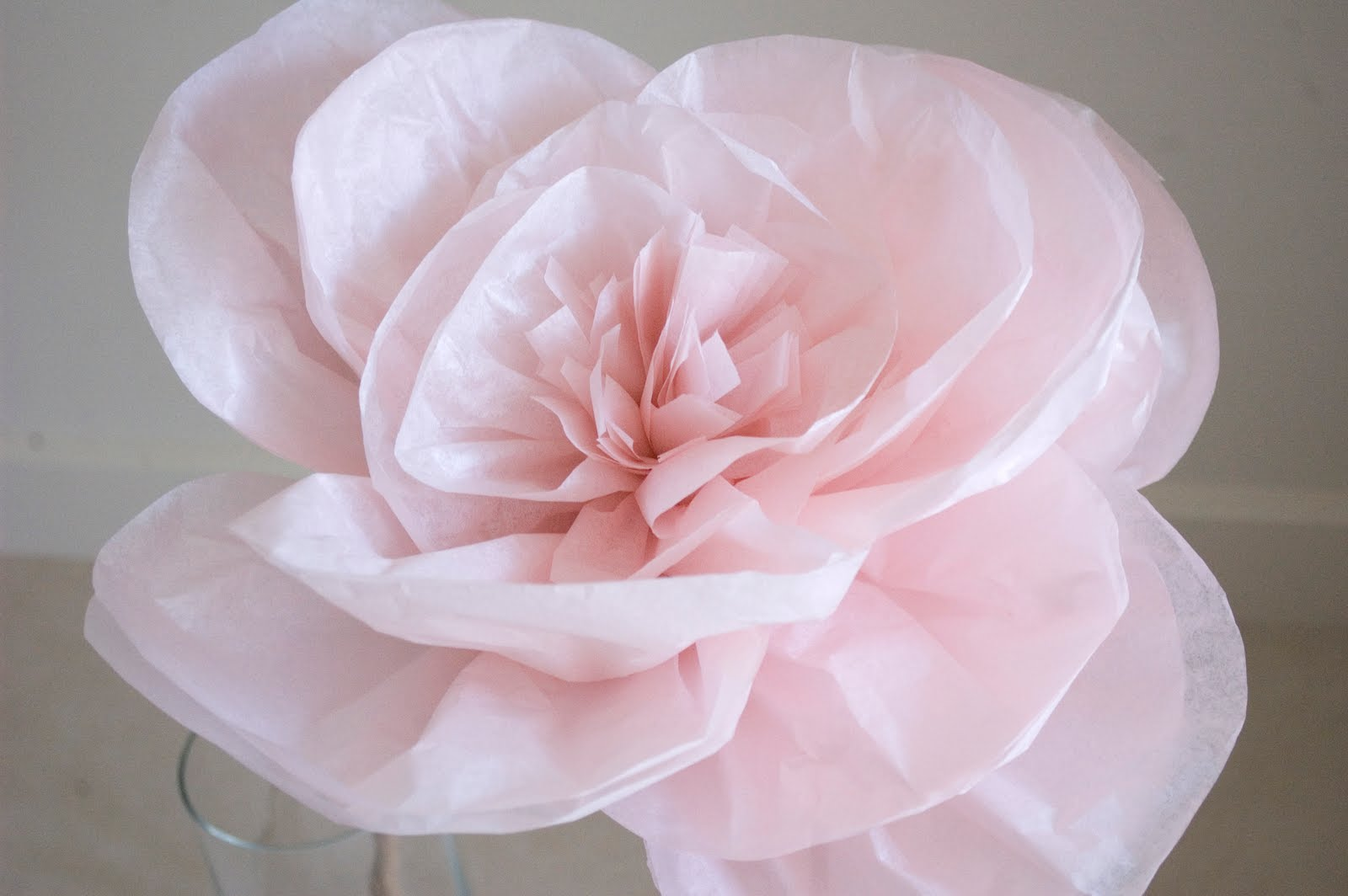 DIY: Tissue Paper Flowers