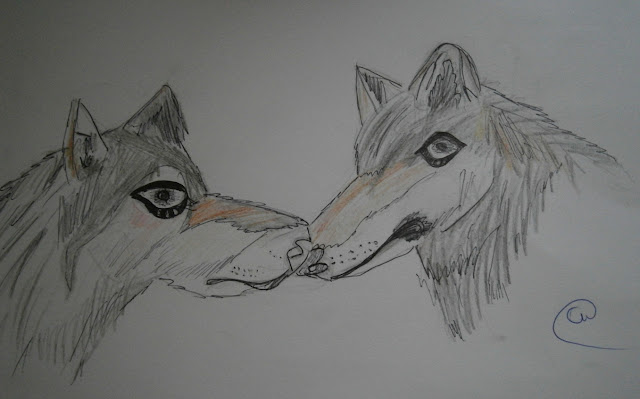 wolves drawing by 9 year old child