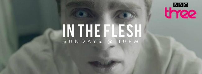 In the Flesh Banner