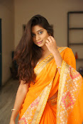 Midhuna New photo session in Saree-thumbnail-12