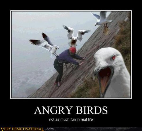 Funny demotivational posters part 25