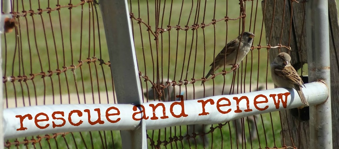 Rescues and Renews