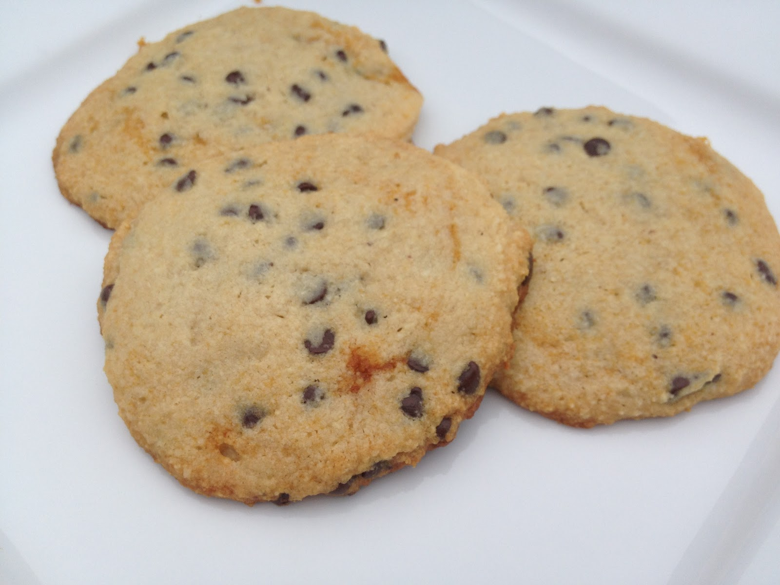 Extraordinary Life: Primal Chocolate Chip Cookies